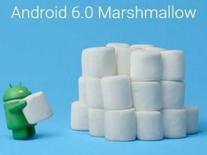 "Android m победит ""жор"" батареи: интервью с google developer expert russia"