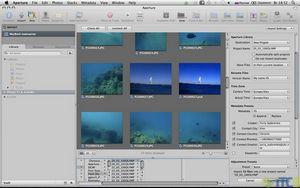 Apple aperture vs. adobe lightroom: что выбрать фотографу?