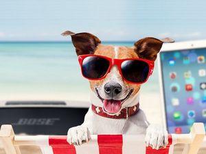 Летний фестиваль интересных гаджетов до 100$ в магазине gearbest