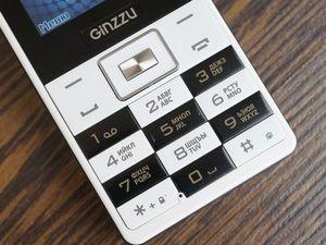 Проверяем на прочность ginzzu r4 dual