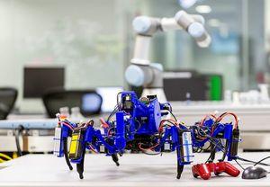 Рой роботов-пауков как безразмерный 3d-принтер