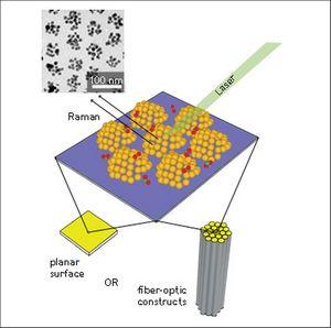 Создание регулярных наборов золотых нанокластеров позволит улучшить sers-сенсоры