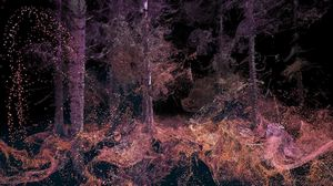 «В глазах зверя» — mlf дает возможность рассмотреть лес изнутри